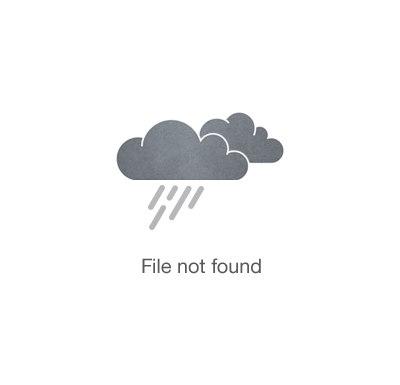 Juan - Brown - Wall Clock