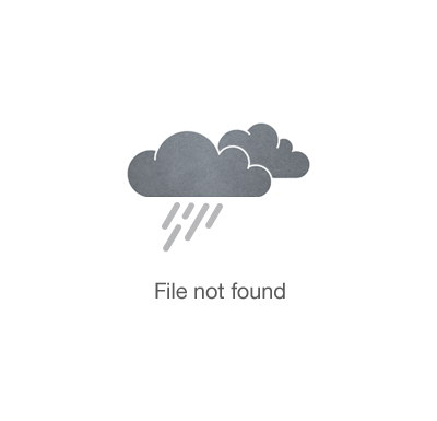 Russell - Brown/Blue - Pillow (4/CS)